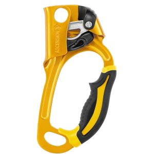 Petzl Ascension Ascenders
